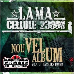 album-5-