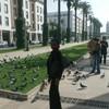 chav2008
