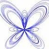 papillon565