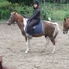 poney-chevaux-du-club