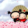 pucca894