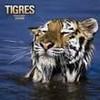 tigredu76