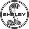Shelby-Lh4u