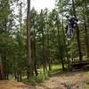 Rider-piix
