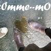 c0mme--mOi