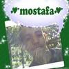 mos-boy