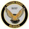 mcp-falcon-riders