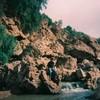 cicadacool