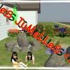 jumelleonthelifes