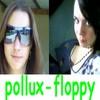 pollux-floppy