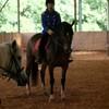 la-maison-du-poney