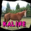 kaline-and-caro