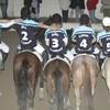 Horsecadettes