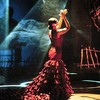 miss-flamenco12