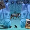 pOline-quachOtte