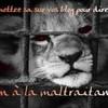 les-animaux-souffrent