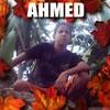 ahmede-196
