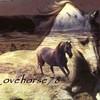 lovehorse78