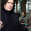 LarmeeDeDumbledore