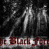 Th3-Black-Forest