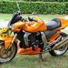 motard82906