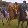Horse--Liife96