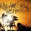 RHCP-forever93