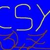 CSY-34ZERO
