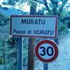MURATU-ILY
