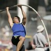 didipolevaulter