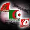 x-Maghreb-Vote-xx