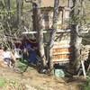 cabane05