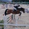 poney-manoir38