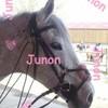 Junon-Des-Mouleyras