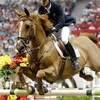 horses-forever57
