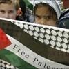 palestine04