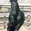 love-horses95