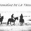 Domaine-De-La-Tacch