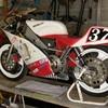 leon1979