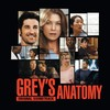 o-grey-s-anatomy