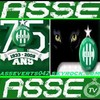 asseverts042