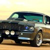 SHELBY162