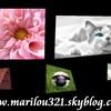 Marilou321