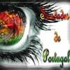 Coracao-portugues-64
