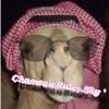 chameau-rules