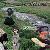 yoruichiandrukia