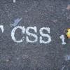 tcss1-iimatures-xd