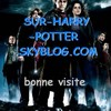 sur-harry-potter