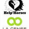 asso-help-horses