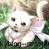 Skyblog--montage